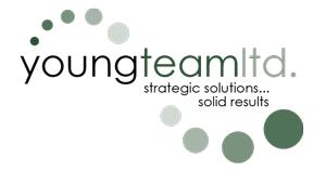 youngteamltd.com